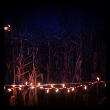 Haunted Halloween Corn Maze