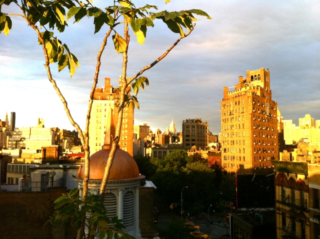 Rooftop View from The West Village